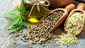 beljakovine rastlinskega izvora